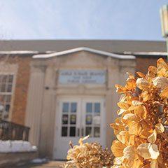 Oak Park Public Library Maze Branch Library exterior