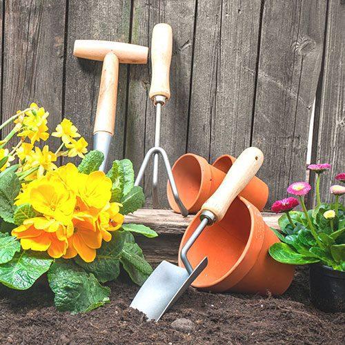 Gardening tools in a flower garden