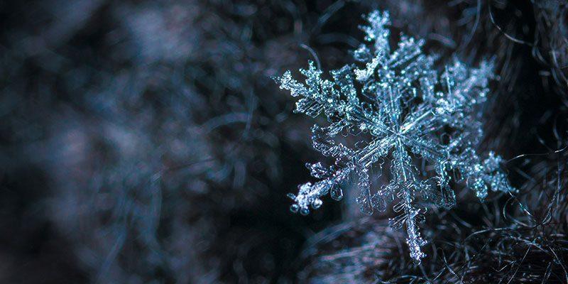Close-up of snowflake