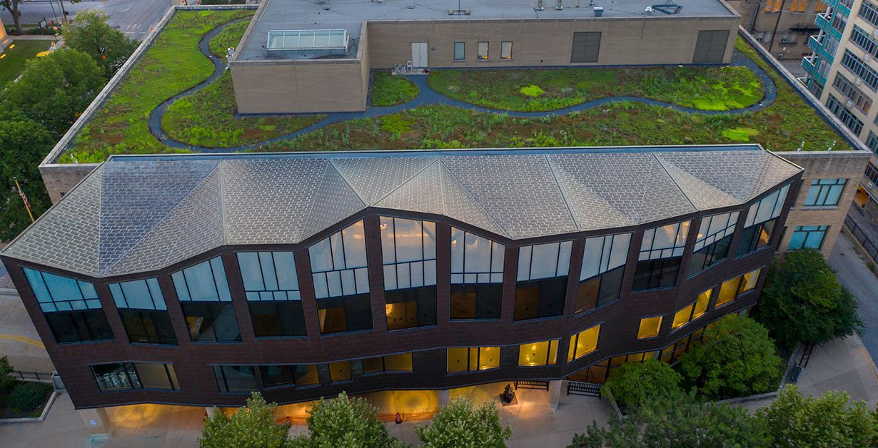 Green roof of the Main Library