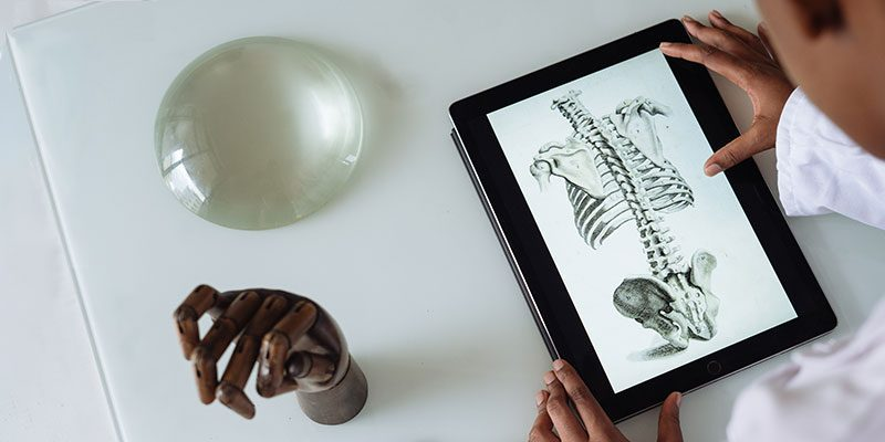Kid looking at anatomy on tablet