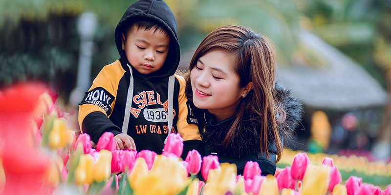 Child and grownup examining tulips