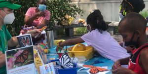Kids and adults do butterfly craft projects
