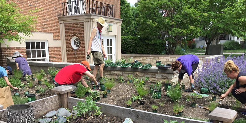 People planting a garden outside the Maze Branch Library